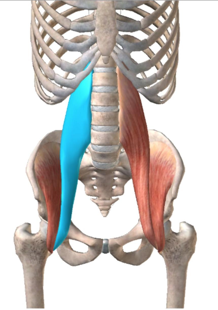 肋骨 押す と 痛い 右 下